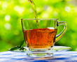 Cup of tea on nature background