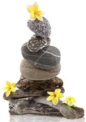 composition avec bois flottés, fleurs et galets