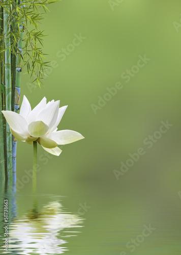 décor relaxant asiatique - 50738663