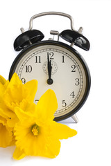 Vintage alarm clock, yellow daffodils, spring, dst.