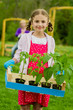 Gardening, planting - lovely girl working in vegetable garden