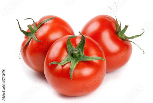 tomates on white background