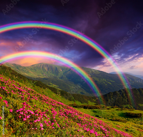 Rainbow over the flowers Photo by Oleksandr Kotenko