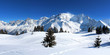 France - Mont-blanc (vu du Prarion)
