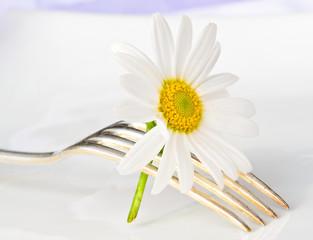 Silberbesteck, dekoriert mit weißer Margerite