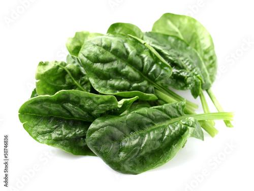 Aluminium Groenten Spinach leaves