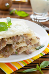 Meat lasagna with mozzarella on a white dish