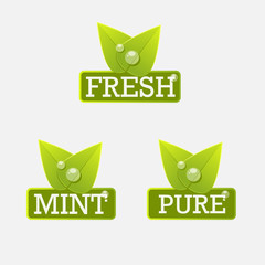 Fresh mint pure label