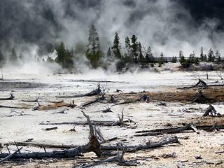 Yellowstone National Park, Wyoming, United States