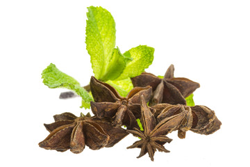 Star Anise and Mint