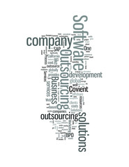 Software Outsourcing Company