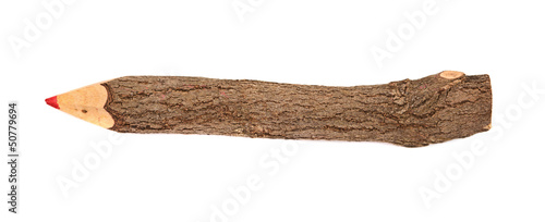 pencil stylized tree branch. isolated on the white