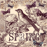 Spring vintage background