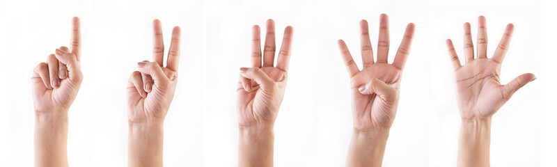 Counting hands (1 , 2, 3, 4, 5)