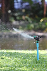 Photo of a Sprinkler in action.