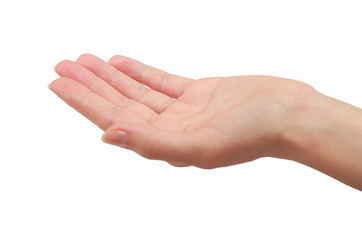 Woman hand palm holding or giving something. Closeup isolated
