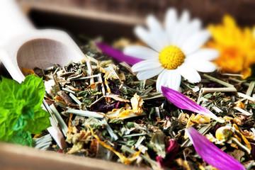 Wellness - Kräuter und Blüten