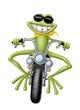 ranocchia biker