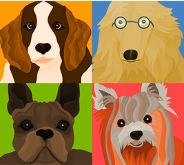 Picture of a four dogs (variation on The Beatles picture)