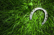 Iron horseshoe on green grass