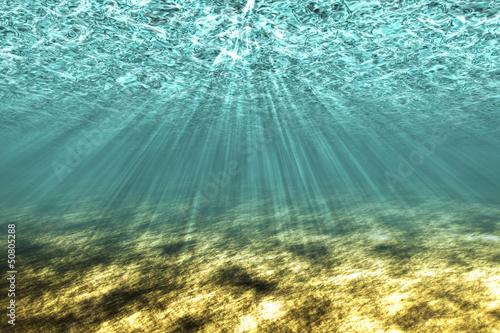 The underwater world background.