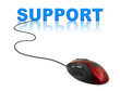 Computer mouse and word support