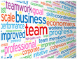 """TEAM"" Tag Cloud (management performance teamwork excellence)"