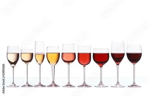 Wine gradient - 50819608