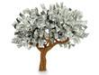 3D Dollar tree