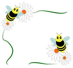 piccole api con margherite