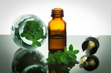 essential oil with oregano leaves