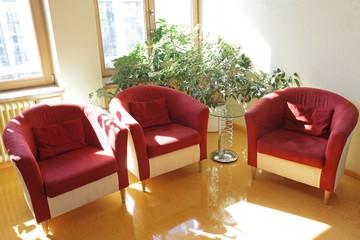 Sitzecke mit Pflanze - Drei bequeme Sessel