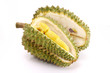 Fresh Durian isolated