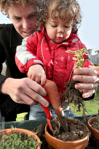 Father and son planting seedlings