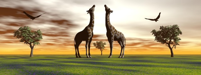giraffe and bird and trees