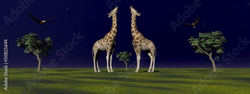 two giraffes and trees
