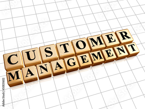 customer management in golden cubes
