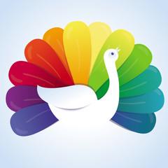 Vector peackok bird with rainbow feathers
