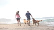 Cheerful couple walking with dogs at beach