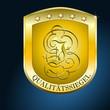 Qualitaet I