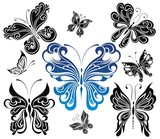 Black and white butterflies.Tattoo design
