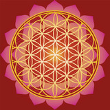 Flower of life in red Lotus