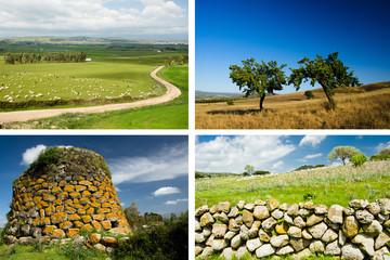 Sardegna rurale, collage di sfondi