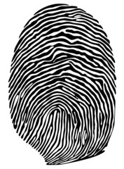 Vector finger print