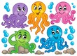 Octopus theme collection 1