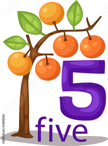 number 5 character with orange tree