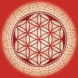 Flower of life seed mandala - 50850086