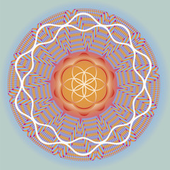 Flower of life seed spring mandala-use for design and meditation
