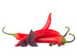 Hot red chili or chilli pepper and basil leaves still life