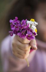 bouquet de violettes et pâquerettes